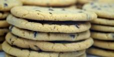 chocchipcookie